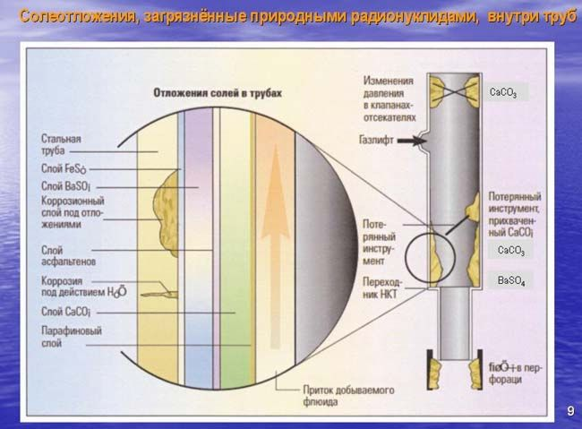 радия-226 и калия–40 и